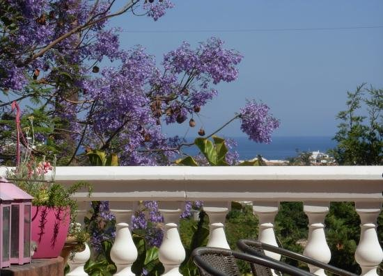 The 10 Best Nerja Bed and Breakfasts of 2017 (with Prices